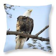 Guardian Perch Throw Pillow