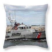 Guarding The Coast Throw Pillow