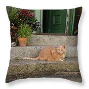 Guarding The Door Throw Pillow