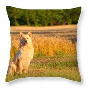 Guarding The Wheat Throw Pillow