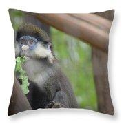 Guenon   4 Throw Pillow