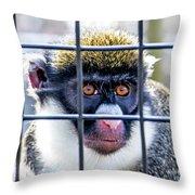 Guenon Monkey Throw Pillow