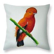 Guianan Cock-of-the-rock Throw Pillow