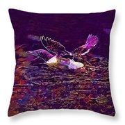 Guillemot Sea Bird Nature Coast  Throw Pillow