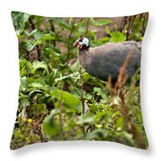 Guineafowl 3 Throw Pillow