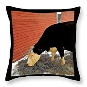 Guinevere Grazing Throw Pillow