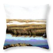 Gulf Coast Florida Marshes I Throw Pillow