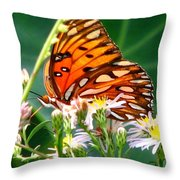 Gulf Fritillary 1 Throw Pillow