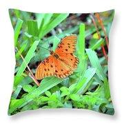 Gulf Fritillary Butterfly  Throw Pillow