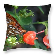 Gulf Fritillary Butterfly On Beautiful Flowers  Throw Pillow