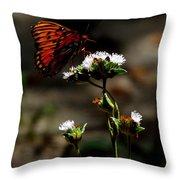 Gulf Fritillary Butterfly Too Throw Pillow