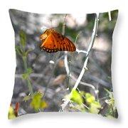 Gulf Fritillary Flying Throw Pillow