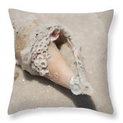 Gulf Of Mexico Shell Throw Pillow