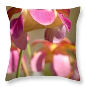 Gulf Purple Pitcher Plant Throw Pillow