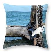 Gulf Shallows Throw Pillow