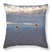 Gulf Shore 2 Throw Pillow