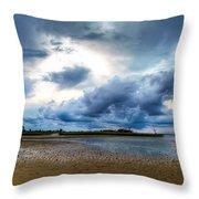 Gulf Storm Throw Pillow