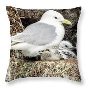 Gull Adult And Chick On Cliff Throw Pillow