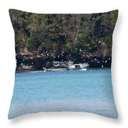 Gull Attack Throw Pillow