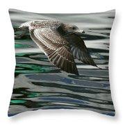 Gull Flight Throw Pillow