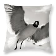 Gull In Flight 2 Throw Pillow