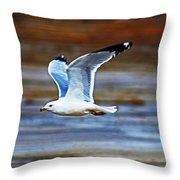 Gull Inflight Throw Pillow