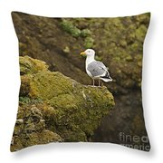 Gull On Cliff Edge Throw Pillow