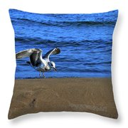 Gull On The Beach  Throw Pillow