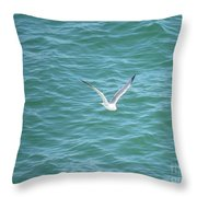 Gull Over The Gulf Throw Pillow