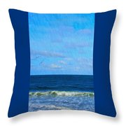 Gulls And Water Throw Pillow