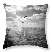 Gulls In A Gale Throw Pillow