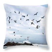 Gulls Of Carmel Throw Pillow