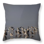 Gulls On A Foggy Beach Throw Pillow