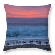 Gulls With Pink Sky Throw Pillow