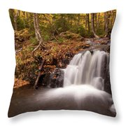 Gully Lake Cascades #1 Throw Pillow