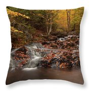 Gully Lake Trail Cascades #2 Throw Pillow