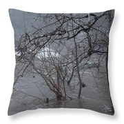 Gumballs Above The Winter Flood Throw Pillow