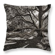 Gumbo Limbo Throw Pillow