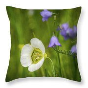 Gunnison's Mariposa Lily Throw Pillow