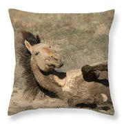 Gunsmoke Dustbath Throw Pillow