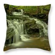 Gushing At Cave Falls Throw Pillow