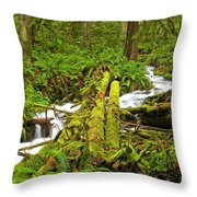 Gushing Through Ferns And Forest Throw Pillow