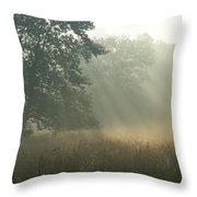 Guten Morgen Throw Pillow