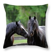 Gypsy Vanner Mares Throw Pillow