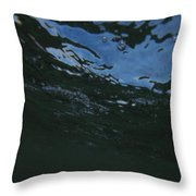 H20 At Its Finest Throw Pillow