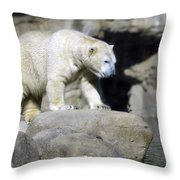 Habitat - Memphis Zoo Throw Pillow