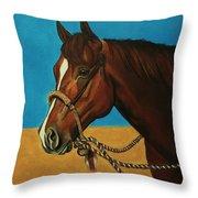 Hackamore Horse Throw Pillow