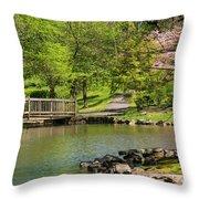 Hagerstown City Park Throw Pillow