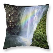 Haines Falls Island Of Dominica Throw Pillow