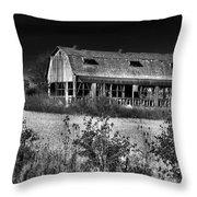Hainesville Barn B/w Throw Pillow